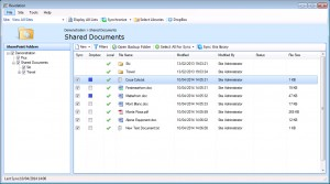 SharePoint files in Revelation Interface